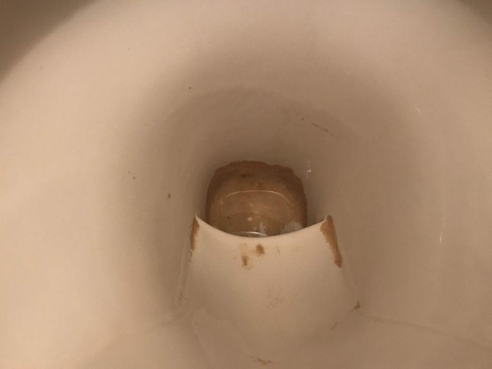 便器底の尿石 水抜き後