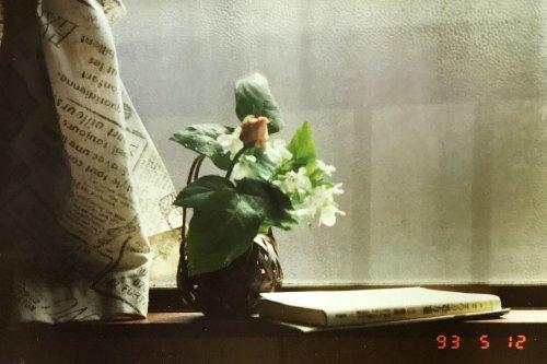 フォトスキャン使用した写真