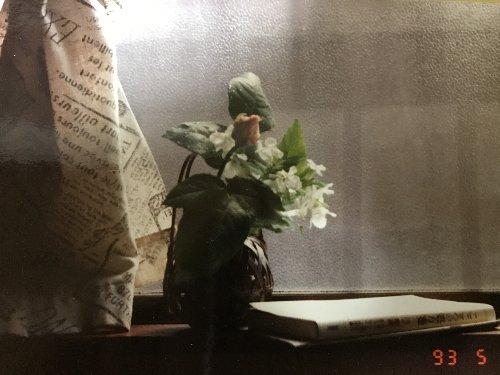 紙の写真を普通にカメラで写した写真