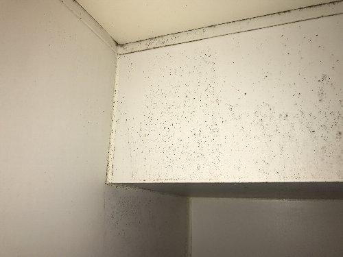 お風呂の壁 掃除前2