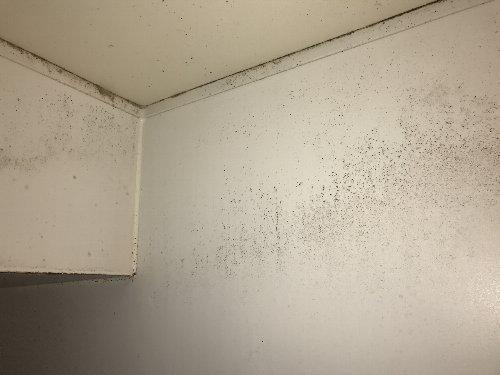 お風呂の壁 掃除前1